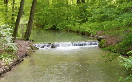 english garden munich stream