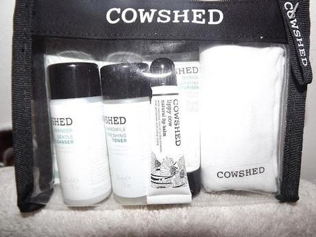 Annie Bean Review: COWSHED