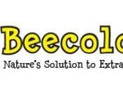 Let's Give Props Propolis: Beecology