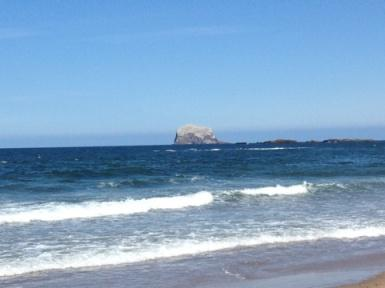 North Berwick, Beach, Fisbee, Dog Walking, Sand