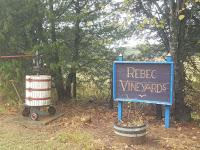 Virginia Wine Month Along U.S. Route 29