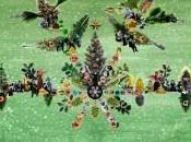 Festive Family First: Glyndebourne Chorus Christmas Concert Woking