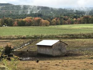 Writers on Location – Linda Mannheim on Western Massachusetts: 'The Happy Valley'