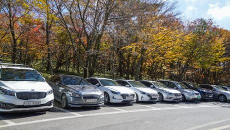 Driving Tips for Your Jeju Car Rental in South Korea