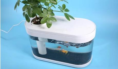 Chinese Xiaomi invasion ~ not phone but a fish tank !!