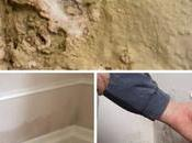 What Common Signs Causes Rising Damp?