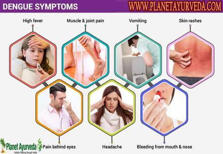 Alternative Treatments and Diets For Dengue Patients