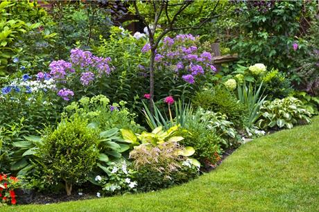 How to Turn Your Garden into a Backyard Paradise