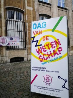 This weekend in Antwerp: 22nd, 23rd and 24th November