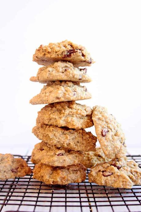 Lactation Cookie Recipe (Vegan, Gluten-Free)