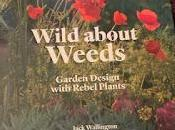 Book Review: Wild About Weeds, Garden Design with Rebel Plants Jack Wallington