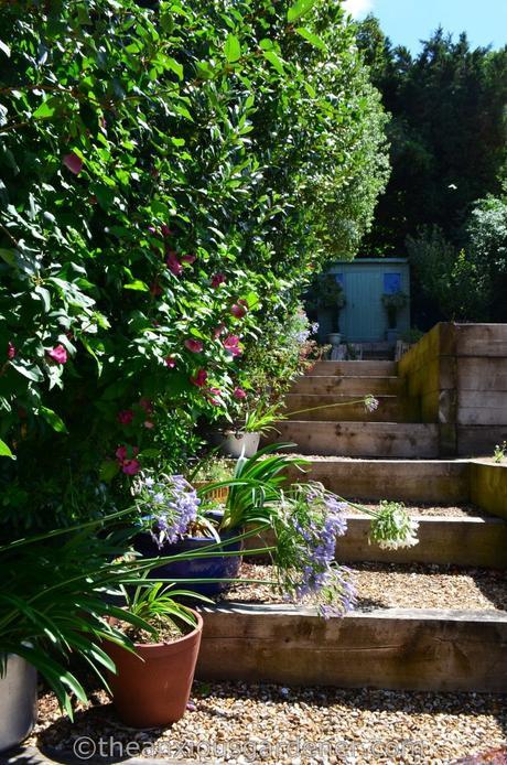 New House New Garden (44)