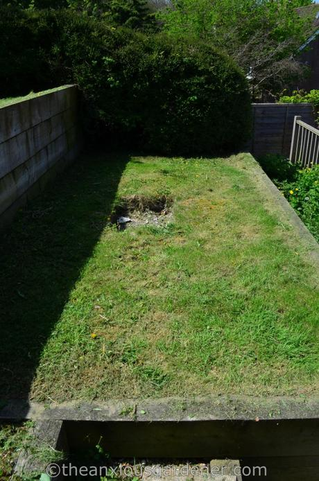 New House New Garden (7)