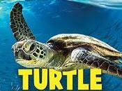 IMAX Enhanced Ultra UHD, Blu-Ray Turtle Odyssey: Bunji's Adventure!