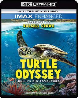 New on IMAX Enhanced 4K Ultra UHD, Blu-Ray and DVD ~ Turtle Odyssey: Bunji's Big Adventure!