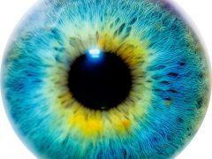 Eye on Nystagmus