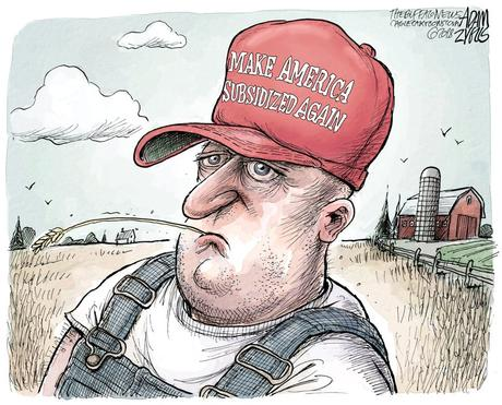 Image result for trump farm bailout