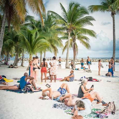 Sea life of Gwada (Guadeloupe)