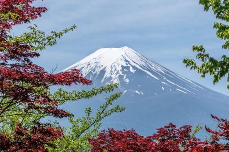 4 Reasons to Visit Tokyo This Summer