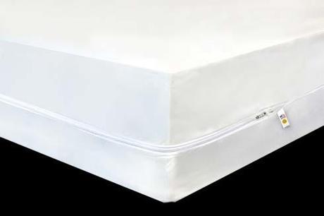 Mattress Pad, Protector, Cover, Encasement or Topper?