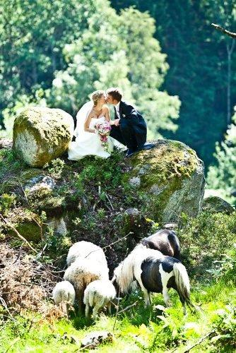 wedding venue ideas bride and groom kissing at the zoo