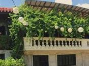 Casa Gorordo Museum Sandiego Ancestral House
