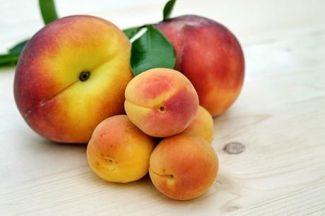 If you've ever eaten an apricot, you know how delicious it can be! When you consider its nutrient profile too, you may ask: Can I give my Baby Apricot?