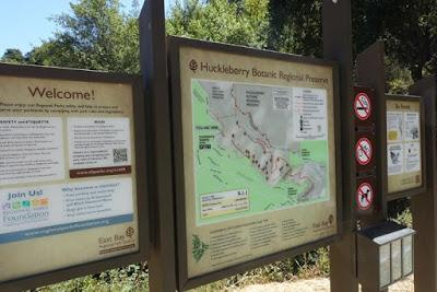 HUCKLEBERRY TRAIL: Shady Hike in the Oakland Hills