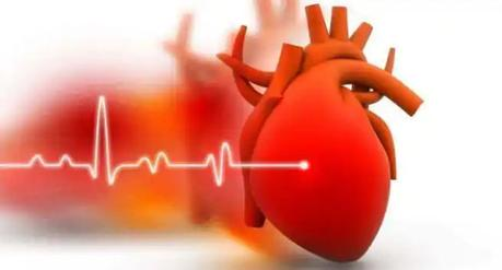 How Can MVP With Atrial Fibrillation Be Treated With Ayurveda?