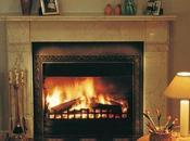 Featuring Planika Fires Business Standard Newspaper
