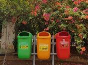 Start 2020 Adopting Zero-Waste Lifestyle
