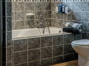 Dual Flush Single Toilet Comparison