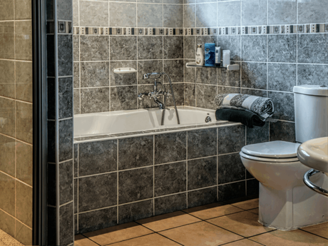 Dual flush vs single flush toilet comparison