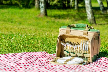 Pros and Cons of Lunch Coolers