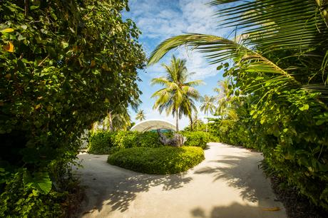 Fitness On Toast Faya Maldives Westin Miriandhoo Travel Active Escape Paradise Wellness Travel Luxury Retreat Island Heavenly-49