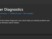 Download Indexer Diagnostics Windows from Microsoft Store
