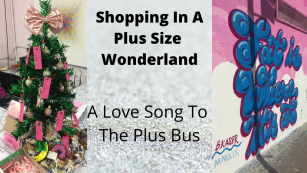 Love Song To IRL Fat Community and The Plus Bus