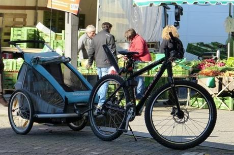 Choosing Between a Bike Cargo Trailer or Bike-Mounted Bags