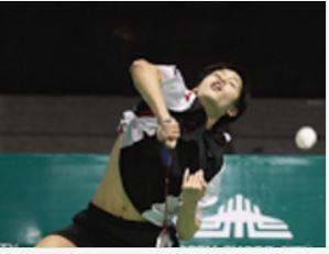 Best Badminton Games Windows Pc