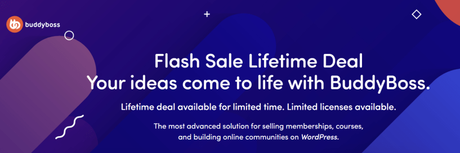 BuddyBoss Lifetime Deal 2020: Limited Time Offer | (Get It For $599)