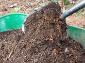 Composting Yard Waste Recycle Your Garden!