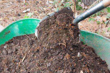 Composting Yard Waste – Recycle in Your Garden!