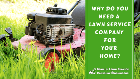 Why Do You Need a Lawn Service Company for Your Home?