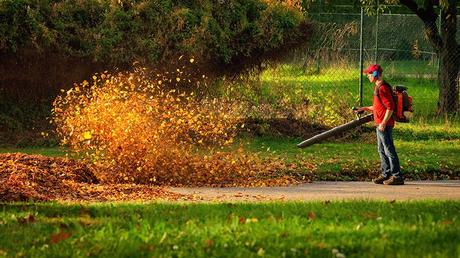 A Simple 4-Step Fall Lawn Care Schedule