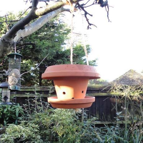 The Big Garden Birdwatch