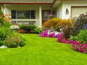 Tips Creating Garden Your Dreams