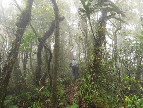 Tres Marias Peak 1: The Misty Mountains Cold