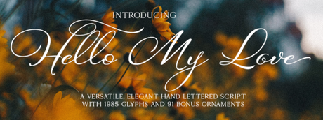 The Love Story That Inspired a Font.