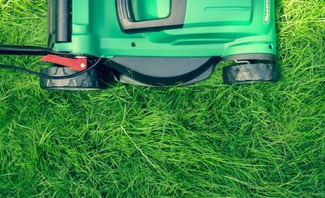 Your Year-Round Lawn Care Calendar