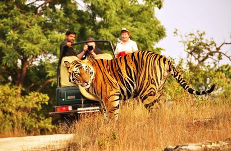 Book Tour Packages For Rajasthan
